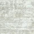Roble blanco